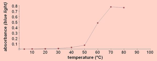 The effect of temperature on the cell membrane of a beetroot Essay Sample