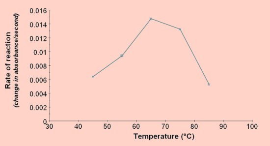 at what temperature was catechol oxidase activity greatest Study biology 1408 enzymes-cv1doc notes determines the specificity of catechol oxidase iii temperature and enzyme range for catechol oxidase activity.